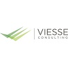 Viesse Consulting srl